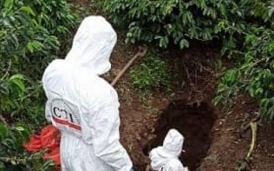 Suroeste de Antioquia: la nueva tierra paramilitar
