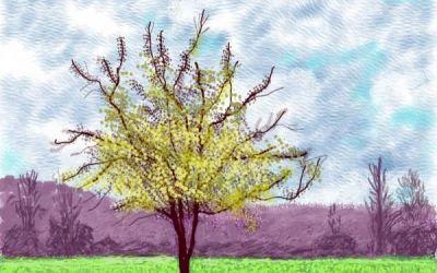 La llegada de la primavera: las imágenes de optimismo y color del artista David Hockney hechas con un iPad