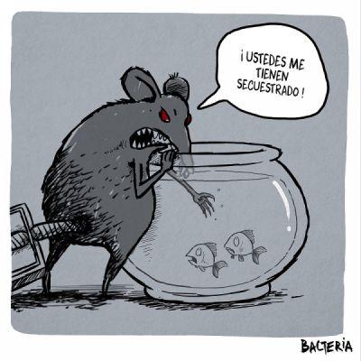 """""""CAZANDO LA JUSTICIA"""""""