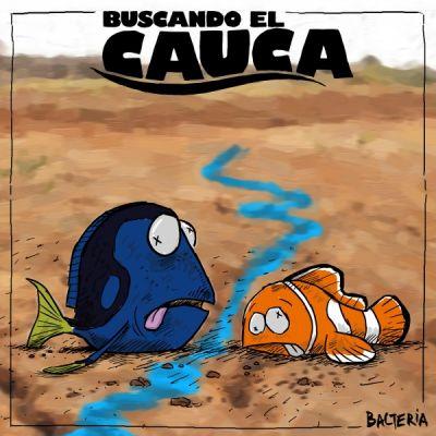 BUSCANDO EL CAUCA