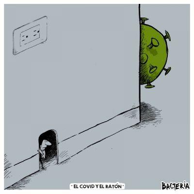 EL COVID Y EL RATÓN